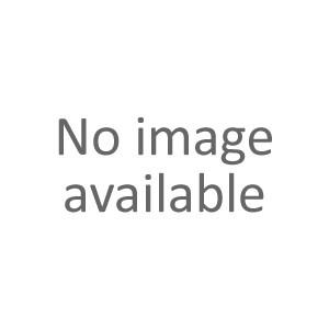 Corydoras rabauti