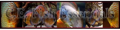 C.E Fish Essential
